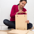 Stock Photo: Assembling furniture
