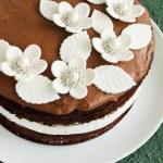 Cake — Stock Photo #25859401