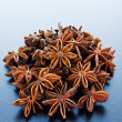 Anise — Stock Photo