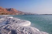 Côte de la mer morte — Photo
