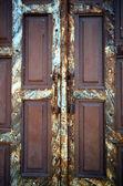 Old rusty door — Stock Photo