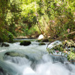 Stock Photo: Banias Waterfall