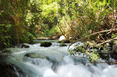 Banias Waterfall — Stock Photo