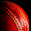 Stock Photo: Ball cricket