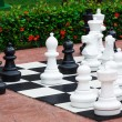 Chess great outdoors — Stock Photo #21631759