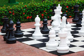 Chess great outdoors — Stock Photo