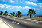 Road by the sea — Stock Photo