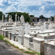 Old Spanish cemetery — Stock Photo #30387157