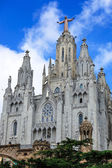Cathedral in Spain — 图库照片