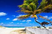 強い風海の上 — ストック写真