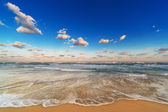 Beach at sunrise — Stock Photo