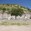 Old Town of Ephesus. Turkey — Stock Photo #12869052