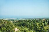 Vue sur la montagne - parc national olympus — Photo