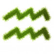 Grass style Symbol - Sign Isolated on white - Stockfoto