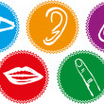 Five senses icon set - Vector Illustration — Stock Vector