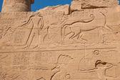 Chrám v karnaku, egypt - vnější prvky — Stock fotografie
