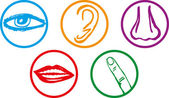 Five senses icon set - Vector Illustration — Stock Vector