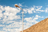 Street light against a blue sky background — Stock Photo