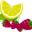 Stock Vector: Raspberry