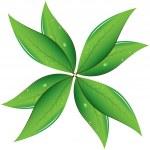 Tea leaves Vector illustration — Stockvector