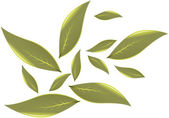Tea leaves Vector illustration — Stock Vector