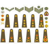 Turkish army insignia — Stock Vector