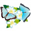Butterfly on a flower-5 — Stock Vector
