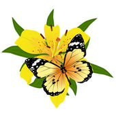 Butterfly on a flower-1 — Stock Vector
