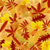 Fondo de hojas de otoño — Vector de stock