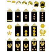Insigne van het iraanse leger — Stockvector