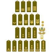 Armed Forces insignia Estonia — Stock Vector