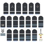 Royal Air Force insignia — Vector de stock