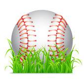 Baseball ball. — Stock Vector