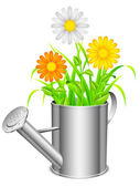 Watering can and flowers. — Stock Vector