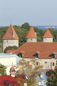 Towers of Tallinn — Stock Photo