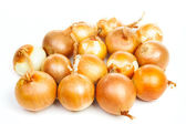 Group of onion — Stock Photo