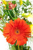 Red flower in bouquet — Stock Photo