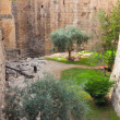 Stock Photo: Moat near tower of David