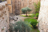 Moat near a tower of David — Stock Photo