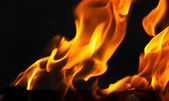 Bright flame background — Stock Photo