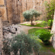 Stock Photo: Ancient moat near tower of David