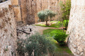 Ancient moat near a tower of David — Stock Photo