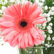 One big pink flower in bouquet — Stock Photo
