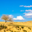 Sky with small clouds over a desert — Stock Photo #30374863