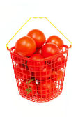 Tomatoes in a bucket — Photo
