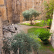 Ancient moat with plants near a tower of David — Stock Photo