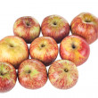 Group of red striped apples — Stock Photo
