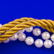 Golden rope & Necklace — Stock Photo #32231379