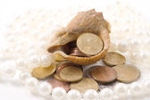 Shellfish & coins — Stock Photo