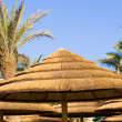 Thatched roof — Stock Photo #35403131